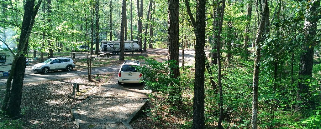 Clear Springs Campground in Homochitto Forest